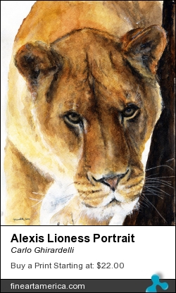 Alexis Lioness Portrait by Carlo Ghirardelli - Painting - Watercolor
