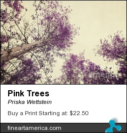 Pink Trees by Priska Wettstein - Photograph - Photography