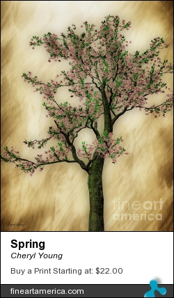 Spring by Cheryl Young - Photograph - Photography,digital Art,digital Editing