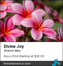 Divine Joy by Sharon Mau - Photograph - Photography - Fine Art
