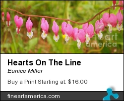 Hearts On The Line by Eunice Miller - Photograph - Photography