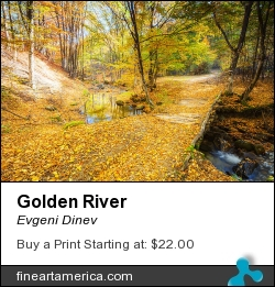Golden River by Evgeni Dinev - Photograph