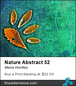 Nature Abstract 52 by Maria Huntley - Digital Art