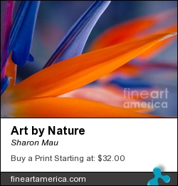 Art By Nature by Sharon Mau - Photograph - Photography - Fine Art