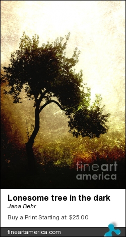 Lonesome Tree In The Dark by Jana Behr - Photograph - Photo
