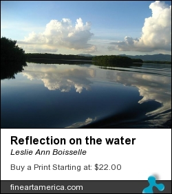 Reflection On The Water by Leslie Ann Boisselle - Photograph - Photography