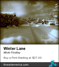 Winter Lane by Micki Findlay - Photograph - Digital Photo Art