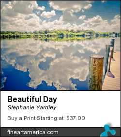 Beautiful Day by Stephanie Yardley - Photograph