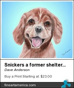 Snickers A Former Shelter Sweetie by Dave Anderson - Mixed Media
