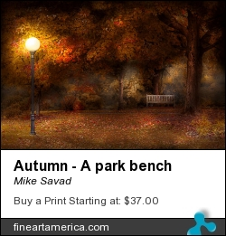 Autumn - A Park Bench by Mike Savad - Photograph - Hdr Photography