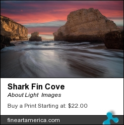 Shark Fin Cove by About Light  Images - Photograph
