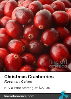 Christmas Cranberries by Rosemary Calvert - Photograph - Photography