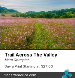 Trail Across The Valley by Marc Crumpler - Photograph