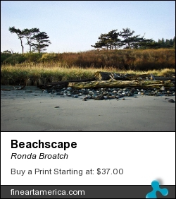 Beachscape by Ronda Broatch - Photograph - Photography