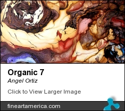Organic 7 by Angel Ortiz - Painting - Acrylic On Canvas