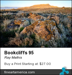 Bookcliffs 95 by Ray Mathis - Photograph - Nikon D800 Image