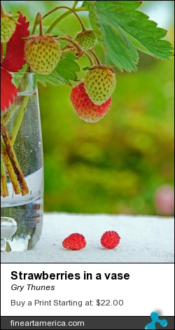Strawberries In A Vase by Gry Thunes - Photograph