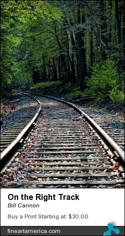 On The Right Track by Bill Cannon - Photograph - Photo