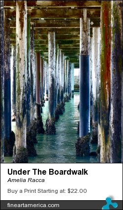 Under The Boardwalk by Amelia Racca - Photograph - Photography