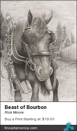Beast Of Bourbon by Rick Moore - Drawing
