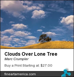 Clouds Over Lone Tree by Marc Crumpler - Photograph