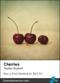 Cherries by Taylan Soyturk - Photograph - Photographs