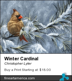 Winter Cardinal by Christopher Lyter - Painting - Oil On Canvas