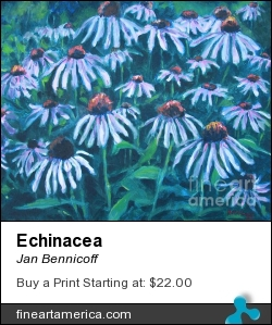 Echinacea by Jan Bennicoff - Painting