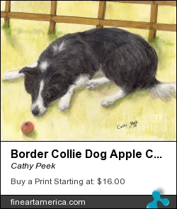 Border Collie Dog Apple Canine Animal Pets Art by Cathy Peek - Painting - Acrylic Ink Watercolor
