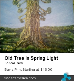 Old Tree In Spring Light by Felicia Tica - Painting - Acrylic On Wood