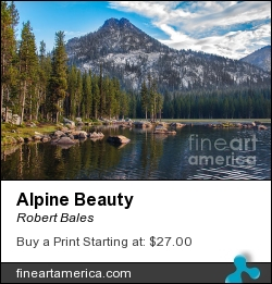 Alpine Beauty by Robert Bales - Photograph - Photo