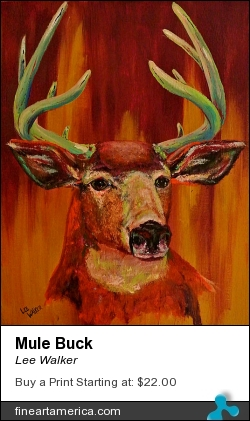 Mule Buck by Lee Walker - Painting - Acrylic On Canvas