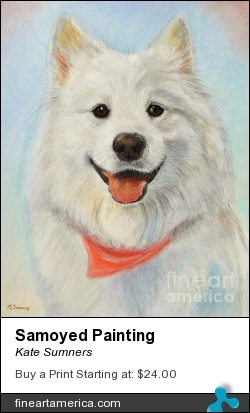 Samoyed Painting by Kate Sumners - Painting - Painting