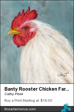 Banty Rooster Chicken Farm Animal Art by Cathy Peek - Painting - Acrylic Ink Watercolor