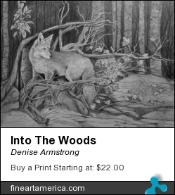 Into The Woods by Denise Armstrong - Drawing - Graphite On Paper