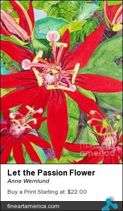Let The Passion Flower by Anne Wernlund - Painting - Acrylic On Canvas