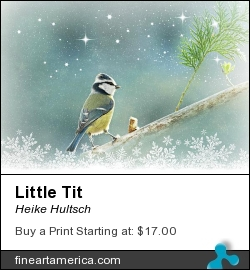 Little Tit by Heike Hultsch - Mixed Media - Fotografie