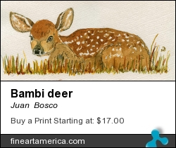 Bambi Deer by Juan  Bosco - Painting - Watercolor On Paper