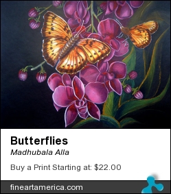 Butterflies by Madhubala Alla - Painting - Acrylic On Cardboard