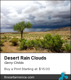 Desert Rain Clouds by Gerry Childs - Photograph