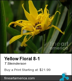 Yellowfloral8 by T Steinderson - Photograph - Photography