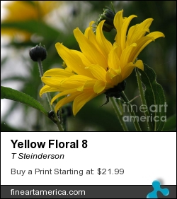 Yellow Floral 8 by T Steinderson - Photograph - Photography