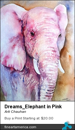 Dreams_elephant In Pink by Arti Chauhan - Painting - Watercolour On Paper