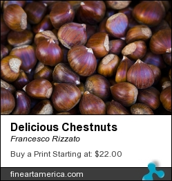 Delicious Chestnuts by Francesco Rizzato - Photograph - Photographs