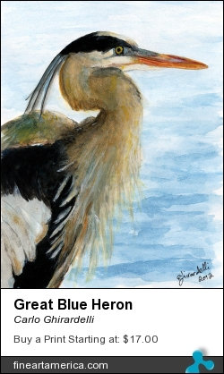 Great Blue Heron by Carlo Ghirardelli - Painting - Watercolor
