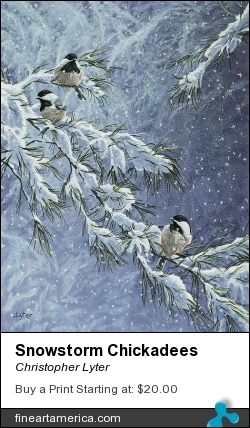 Snowstorm Chickadees by Christopher Lyter - Painting - Acrylic On Canvas