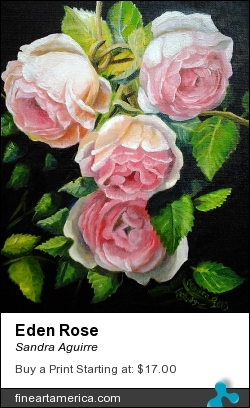 Eden Rose by Sandra Aguirre - Painting - Oil On Canvas