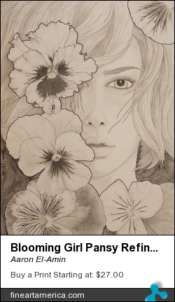 Blooming Girl Pansy Refined by Aaron El-Amin - Drawing - Graphite Pencil And Ink On Heavy-weight Fine Texture Paper