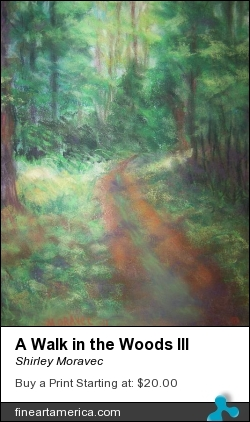 A Walk In The Woods IIi by Shirley Moravec - Photograph - Digitally Altered Photos