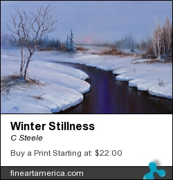 Winter Stillness by C Steele - Painting - Oil On Canvas